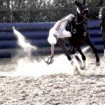 馬に乗りながらプレーヤーが専用のボールを扱いゴール数を競う球技で、チームスポーツ【ホースボール】のルール、費用、必要な道具など