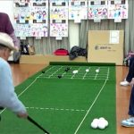 碁盤に見立てた人工芝の専用マットと白黒のボール、木製スティックを用いる五目並べ【囲碁ボール】のルール、費用、必要な道具など