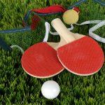 【スポーツ口コミ】球技界最速のスポーツ!卓球の魅力とは?